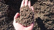 Песок фракции 0-4 с доставкой от 1 тонны,  без посредников