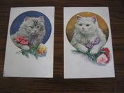 2 открытки Кошки Польша