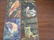 4 открытки с животными и птицами