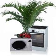 Срочный ремонт микроволновых СВЧ печей,  на дому или в мастерской
